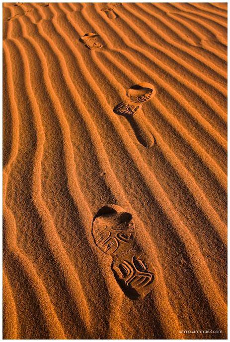 Shoe print - 2