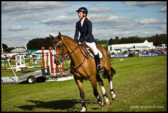 Horse jump - 1