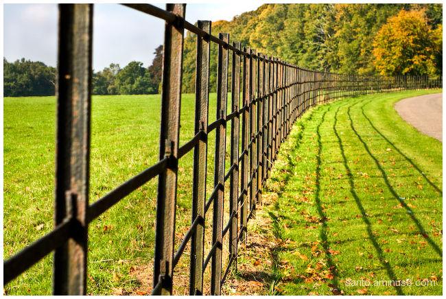 Fenced...