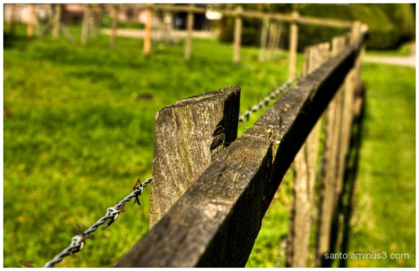 Wooden fence..