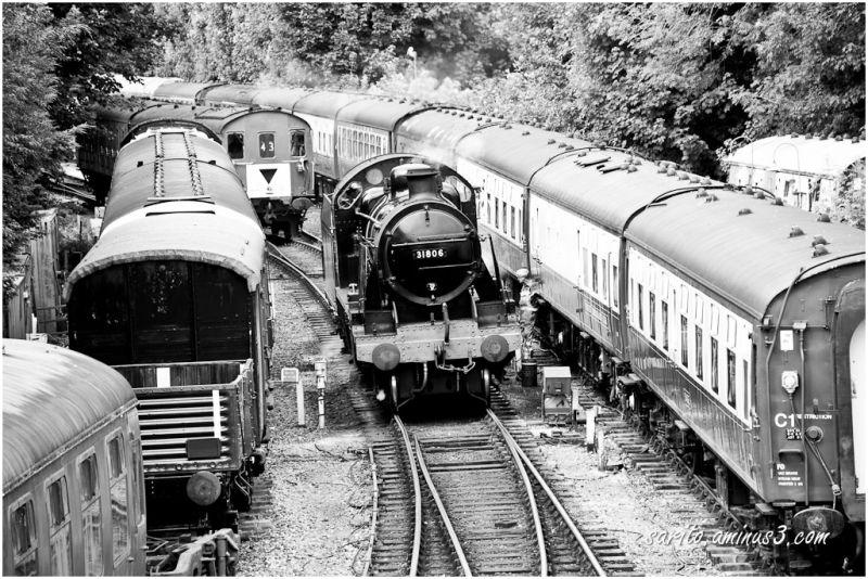 31806 - SR U Class - 1