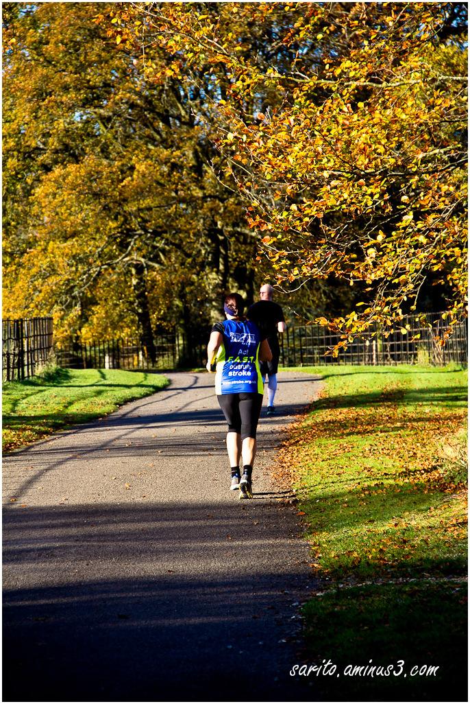 Autumn - 7: Exercise