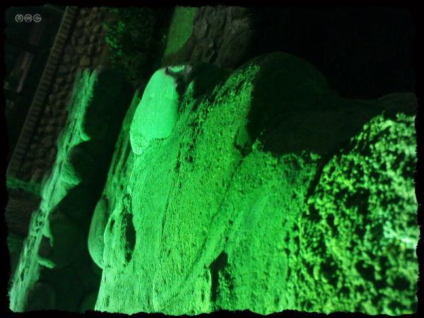 """...greens [5]..."""