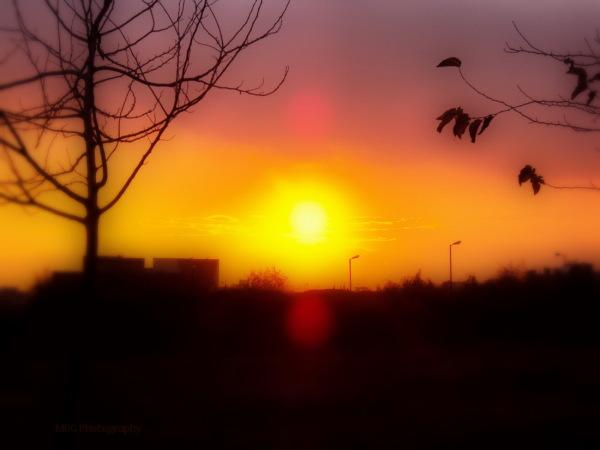 sun set to rise