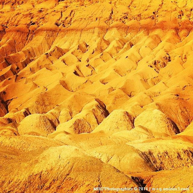 Desert Trip- Opus VI