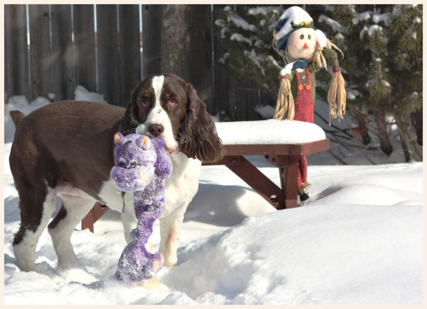 Sadie and friend