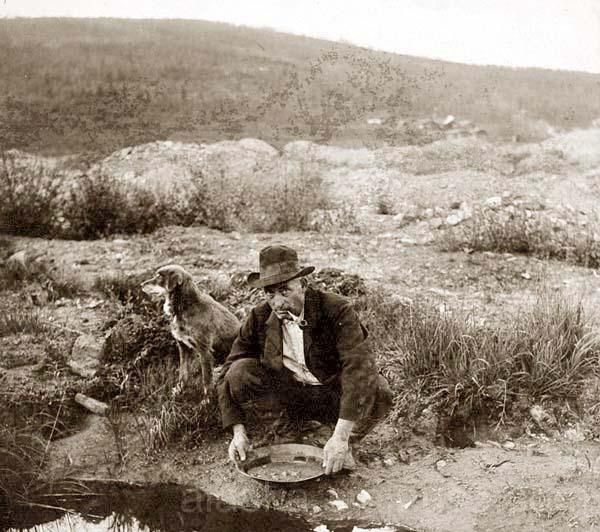 An Alaskan Dog and Gold Miner
