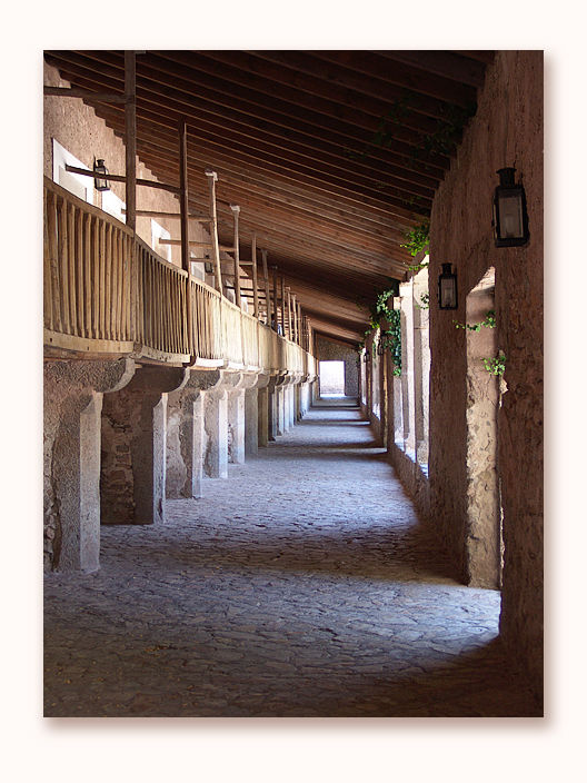 at Lluc monastery / Majorca