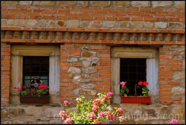 happy windows