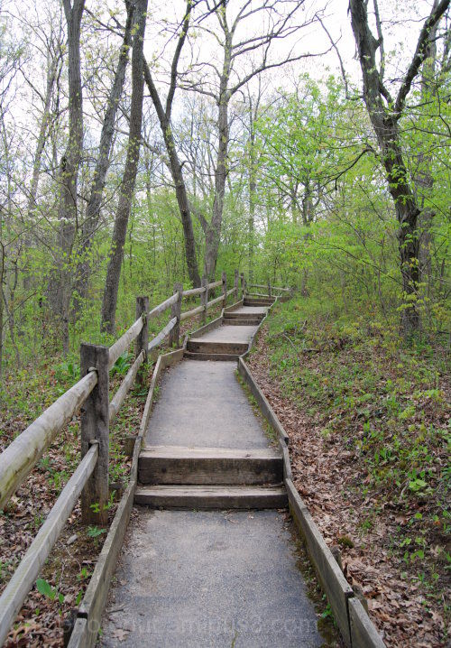 Path, Stairs, Nature Path