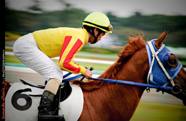 portrait of a horse jockey