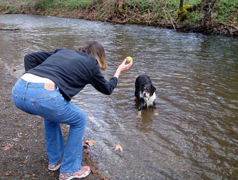 Taffy at the creek