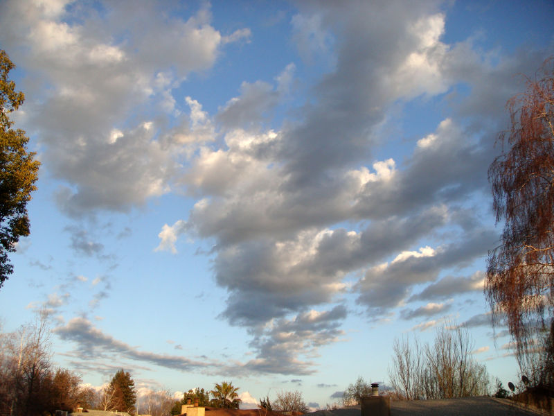 Front Yard Sky