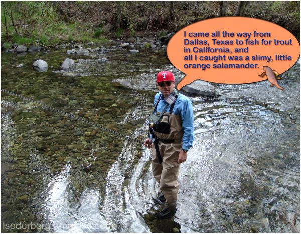 Fishing for salamanders