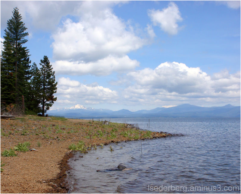 West Shore Lake Almanor