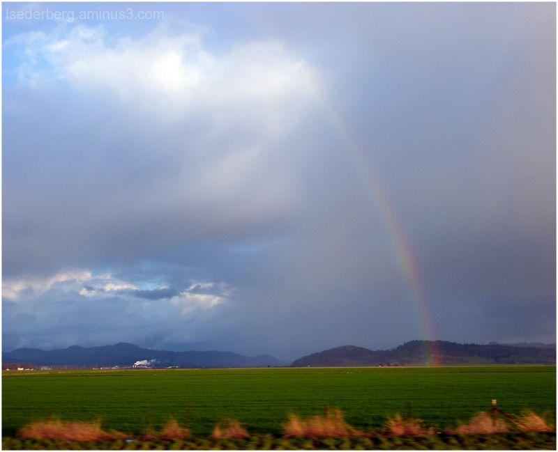 Oregon Rainbow