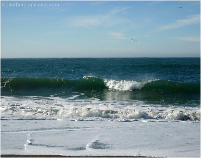 Navarro Beach surf