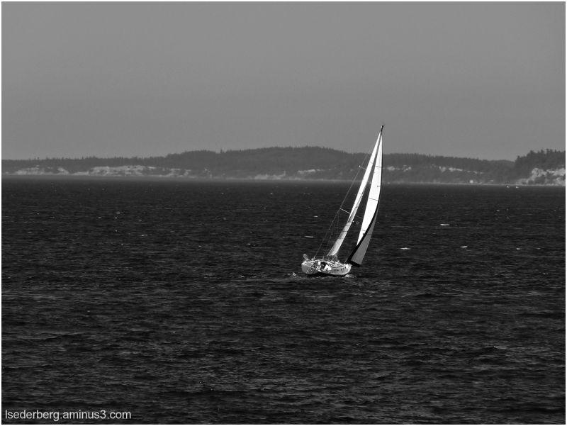 Sailboat in b/w