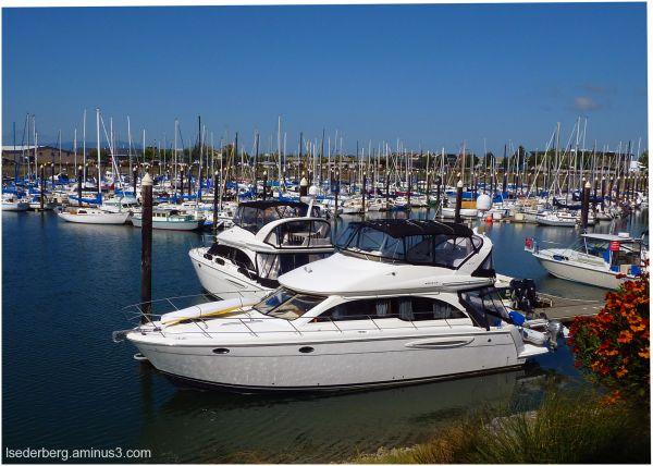 Harbor at Bellingham