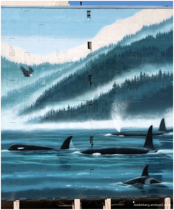 Whales on the wall