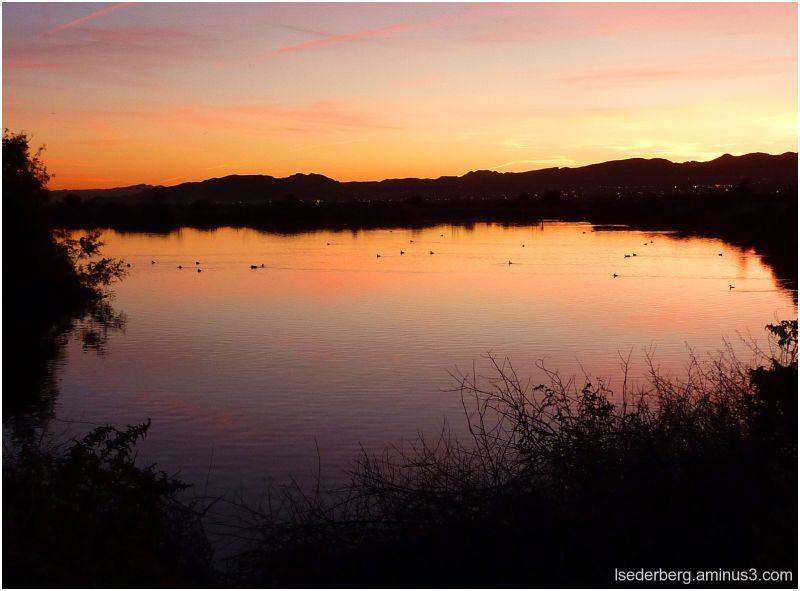 Henderson Bird Refuge at sunrise