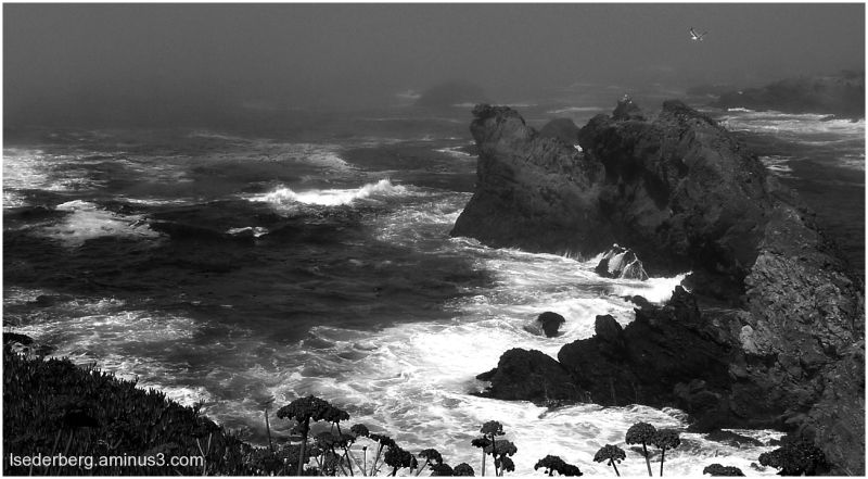 Caspar cove in b/w