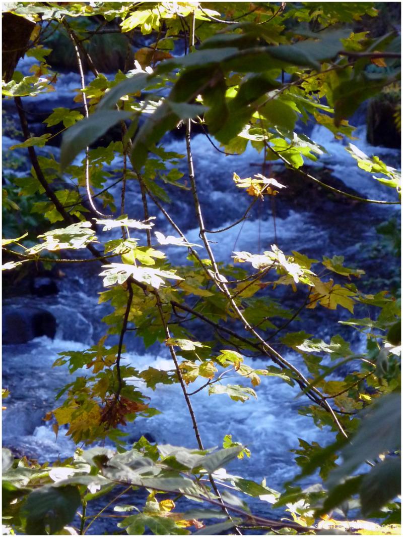 Another view of Deer Creek
