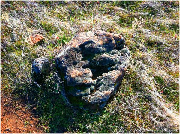 Rock in upper park