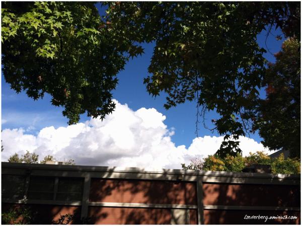 Campus sky
