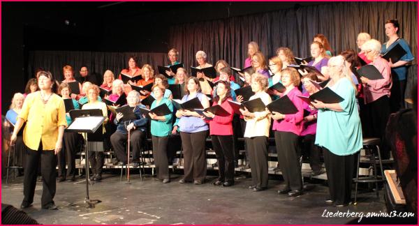 Mendocino Women's Choir
