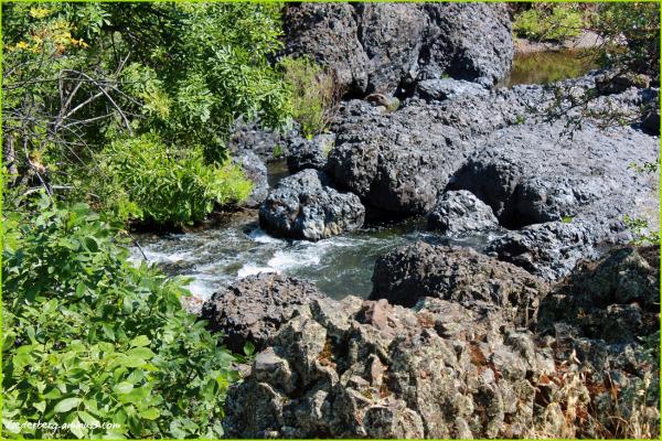 Upper Park Chico Creek