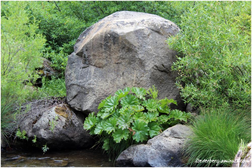 Butt Creek Rock