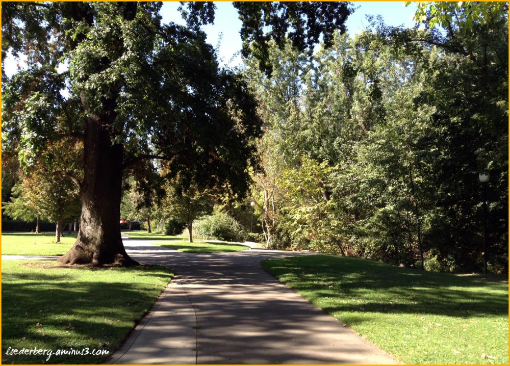 Walk on campus