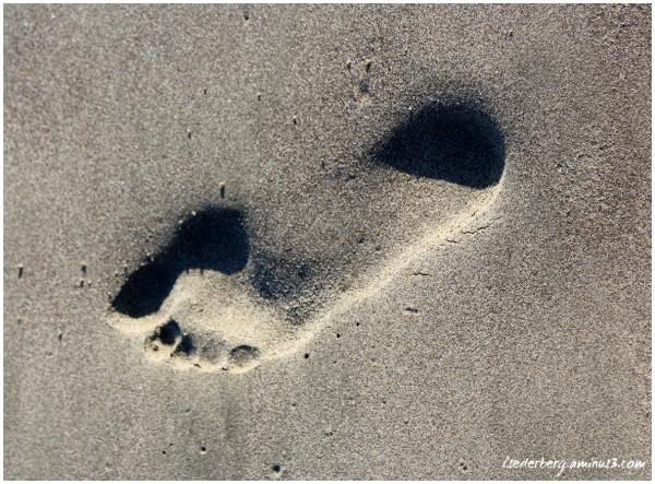Footprint one