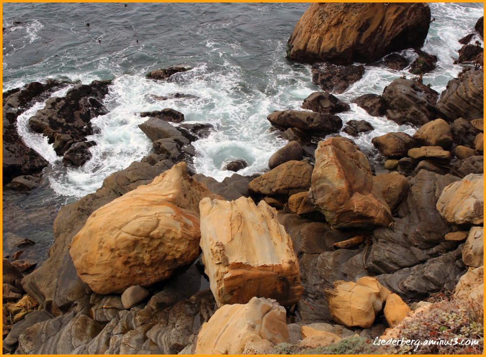 Rocky coast at Timber Cove
