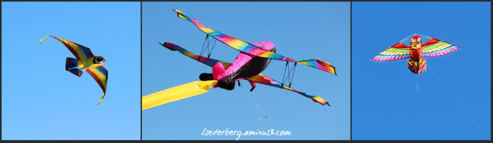 Chico Kite Day