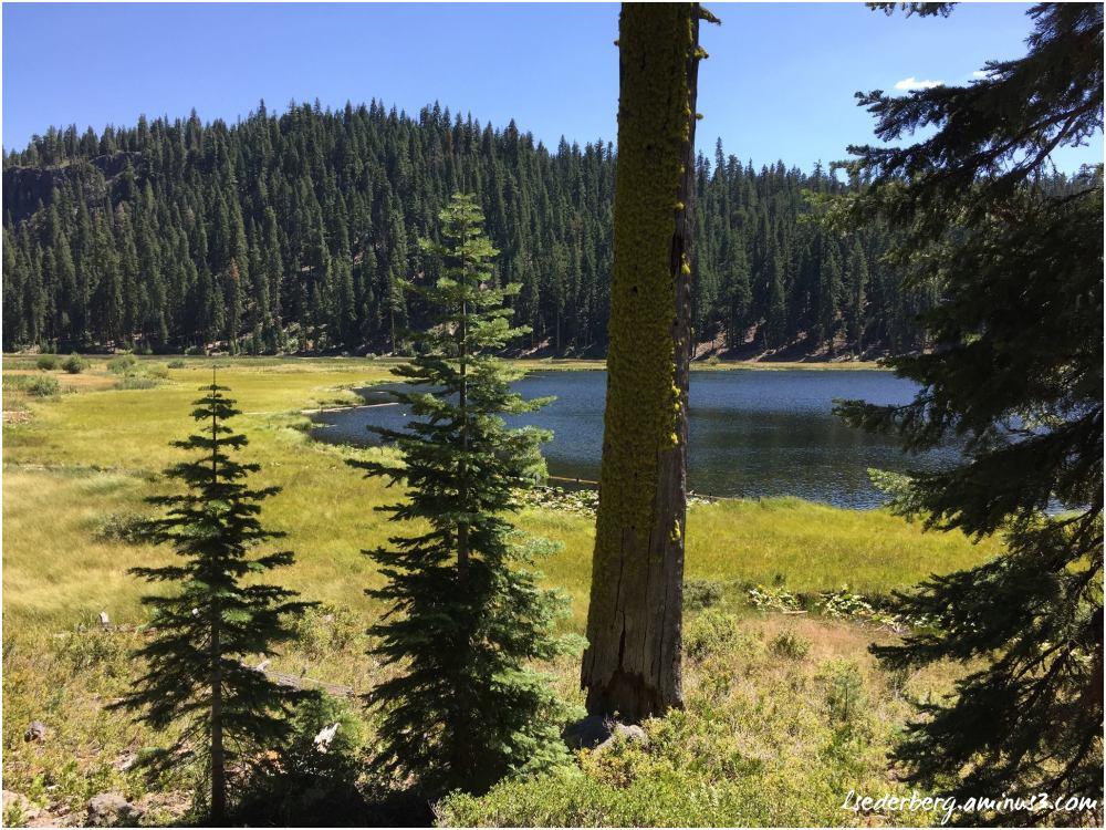 Willow Lake (3 of 4)