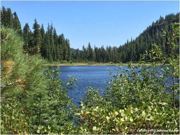 Willow Lake (4 of 4)