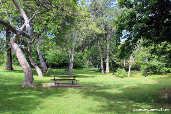 5 Mile picnic