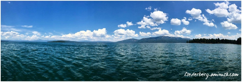Lake Almanor panorama