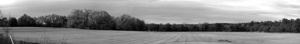 Gainesville Farm