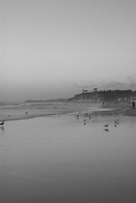 Del Mar Space