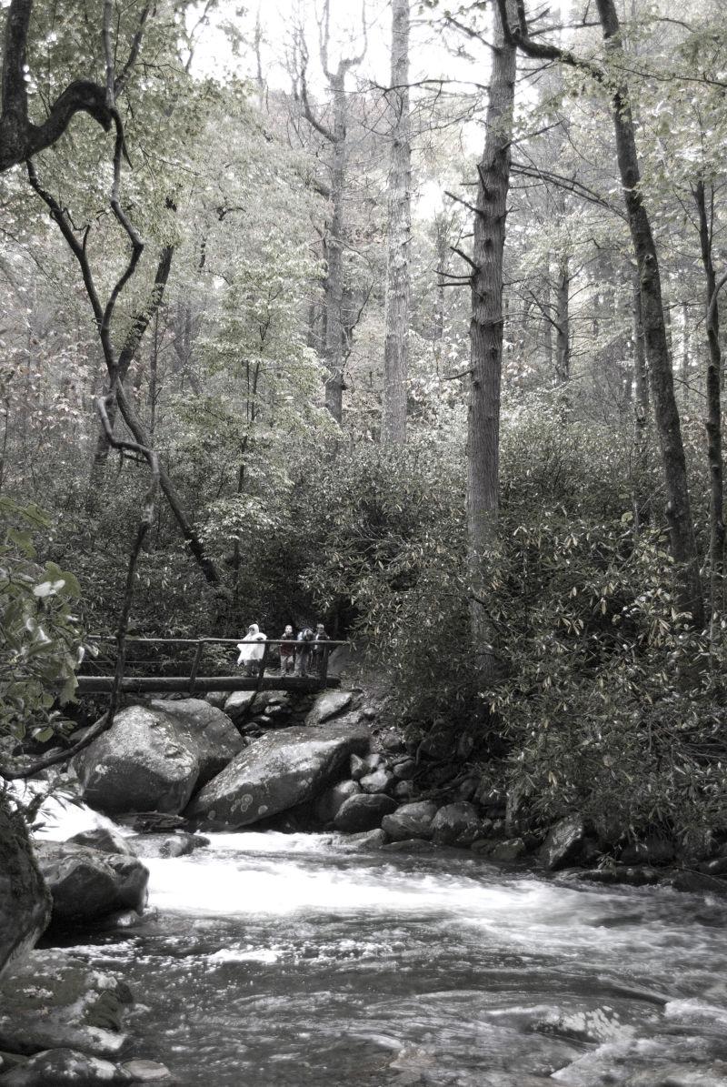 Swollen waters, Smokey Mountains hike