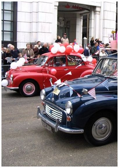 Moggies at the Lord Mayor's Show