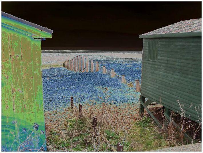 Beach Huts, Whitstable #5