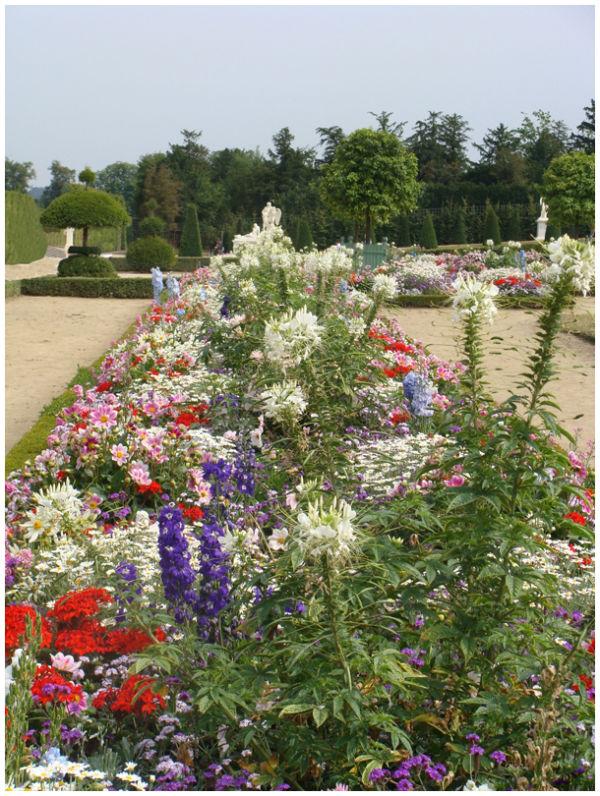 Garden at Versailles #1