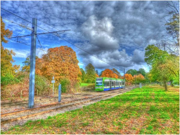 Silly Tuesday - Autumn in HDR