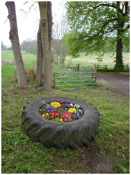 Silly Tuesday - Tyred Flowers