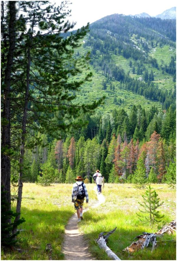 Walking in the Grand Tetons