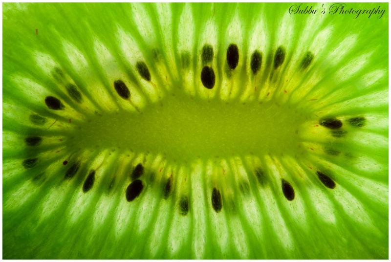 Kiwi-Macro